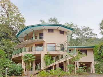 Cloud Forest Estate