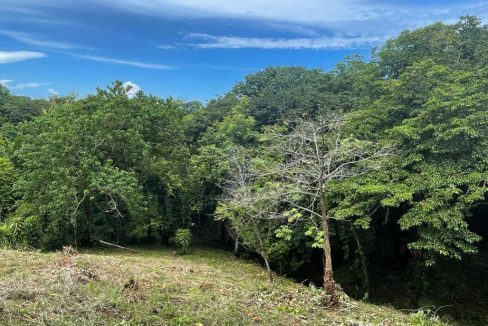Costa Rica Real Estate - Development Opportunity